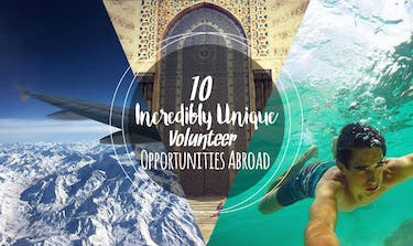 10 Incredibly Unique Volunteer Opportunities Abroad with IVHQ