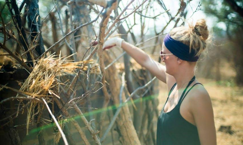 10 Incredibly Unique Volunteer Opportunities Abroad - Victoria Falls