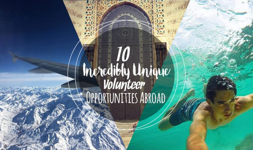 10 Incredibly Unique Volunteer Opportunities Abroad