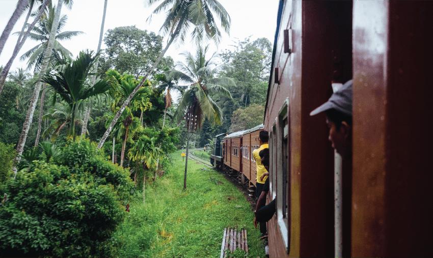 Christmas volunteering with IVHQ in Sri Lanka