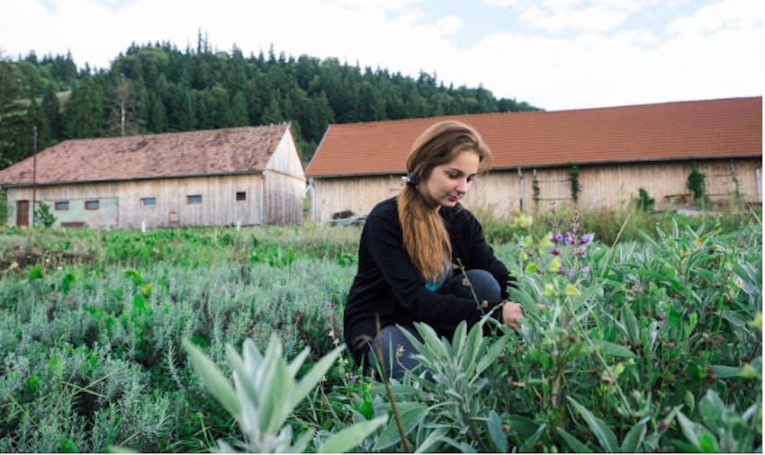 Best Summer Volunteer Abroad Programs Romania