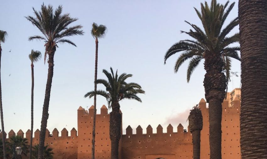 Environmental volunteering opportunities in Morocco