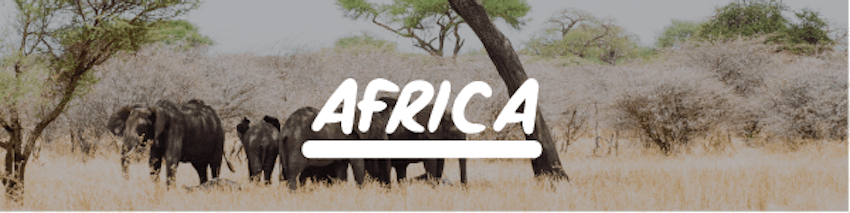 Volunteer holidays abroad Africa