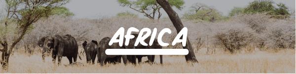 Volunteer holidays abroad Africa