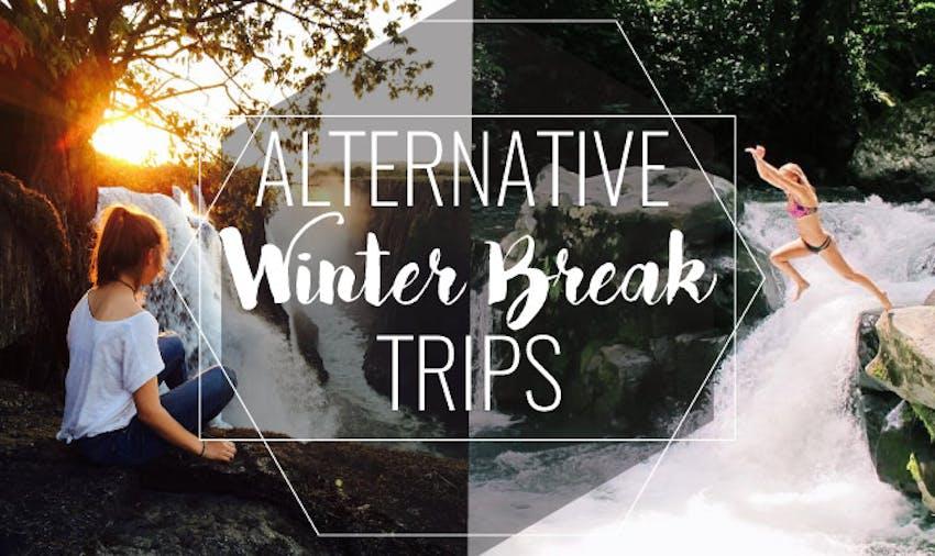 Top Alternative Winter Break Trips with IVHQ