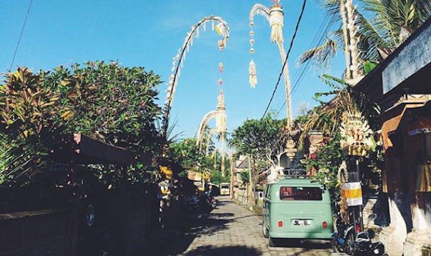 Volunteer in Bali with IVHQ