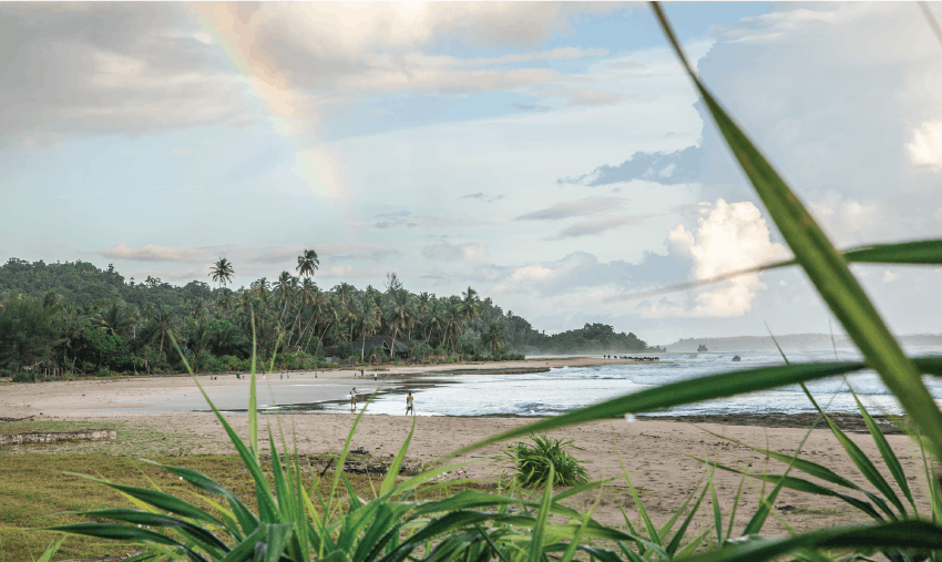 Ocean Conservation Volunteering in Indonesia