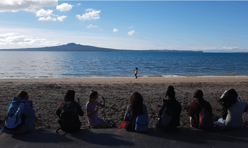 Ocean Conservation Volunteering in New Zealand