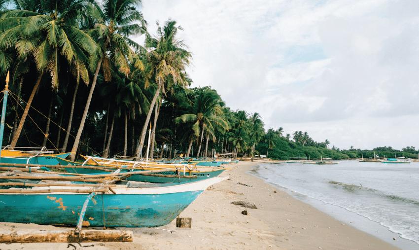 Ocean Conservation Volunteering in the Philippines