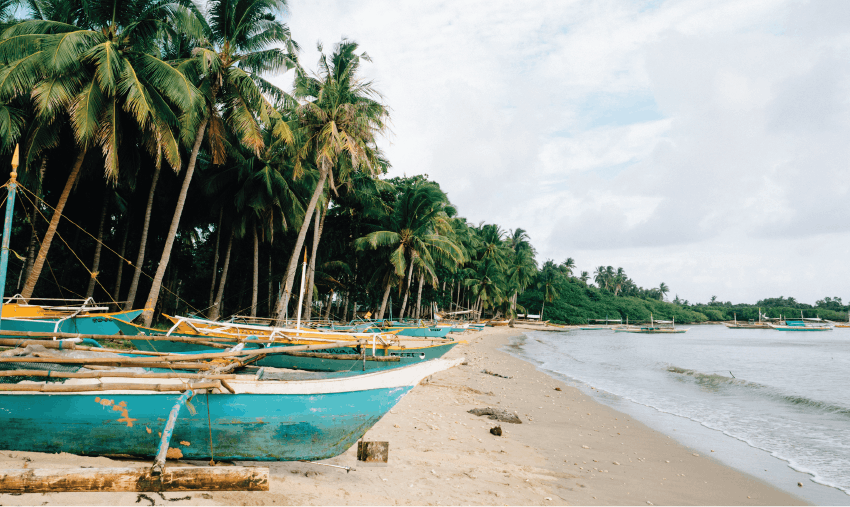 Ocean Conservation Volunteering in the Philippines