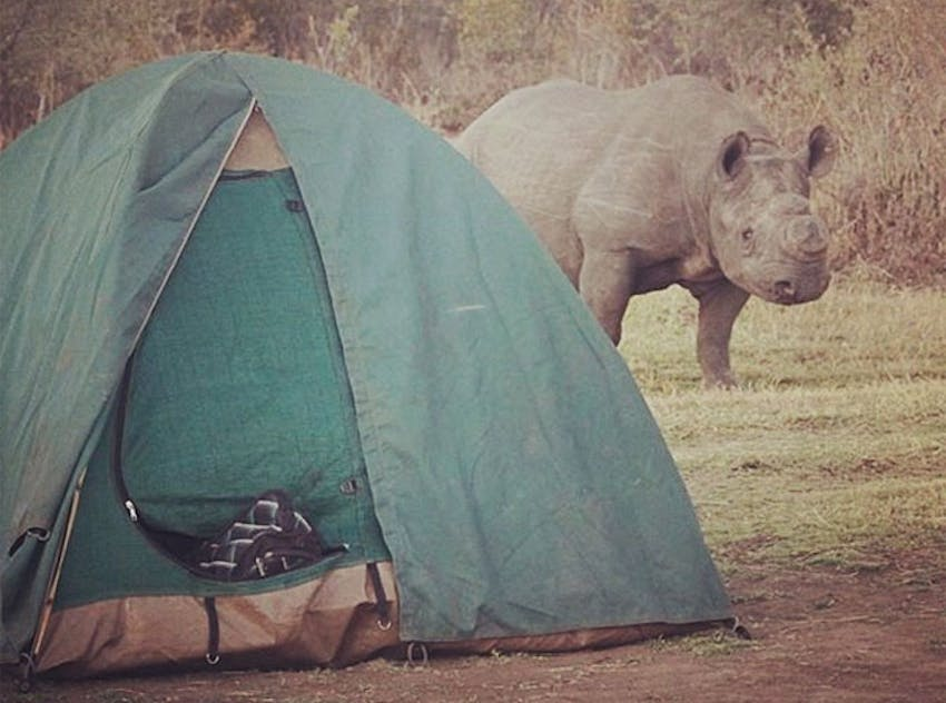 Go camping as a volunteer in Victoria Falls with IVHQ