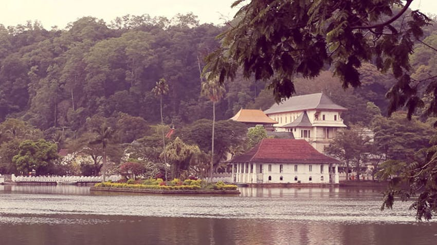 Cheap volunteering in Sri Lanka with IVHQ