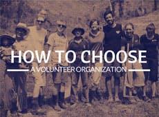 Who Should I Volunteer Overseas With?