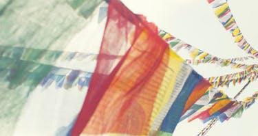 Help Nepal Digitally