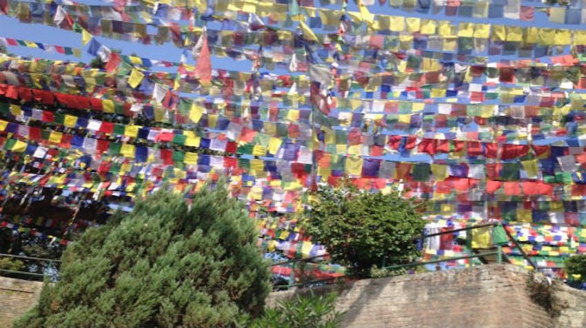 IVHQ Volunteer Cultural Orientation Excursion