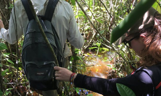 What To Expect When Volunteering In The Jungle - Peru - Cusco