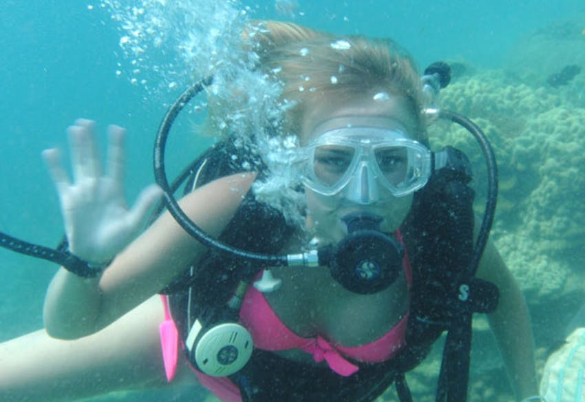 Marine conservation opportunities for IVHQ volunteers