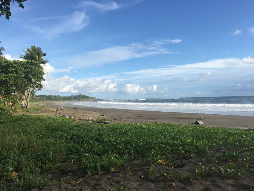 Volunteer with IVHQ in Costa Rica