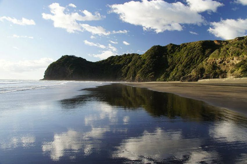 The New Zealand Coastline with IVHQ
