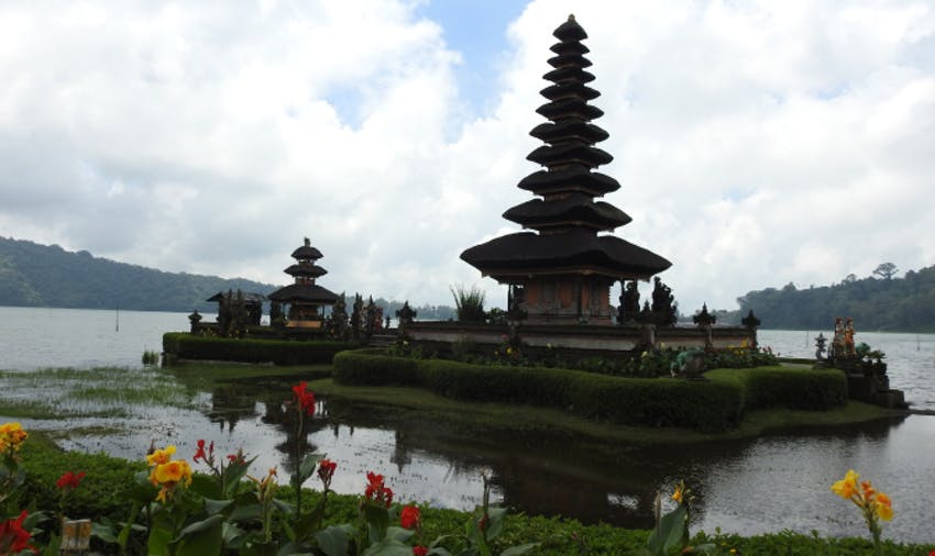 Which Bali Program is Best for You?