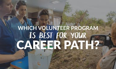 Which Volunteer Program Is Best For Your Career Path?