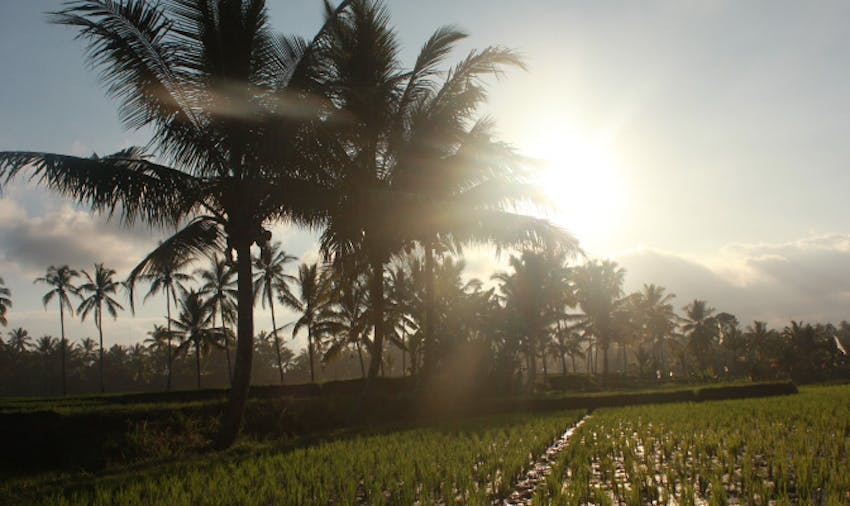 Two Breathtaking Itineraries To Add To Your Bali Bucket List