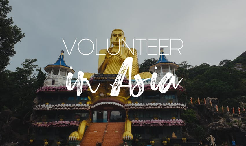 Volunteering in Asia: the best programs