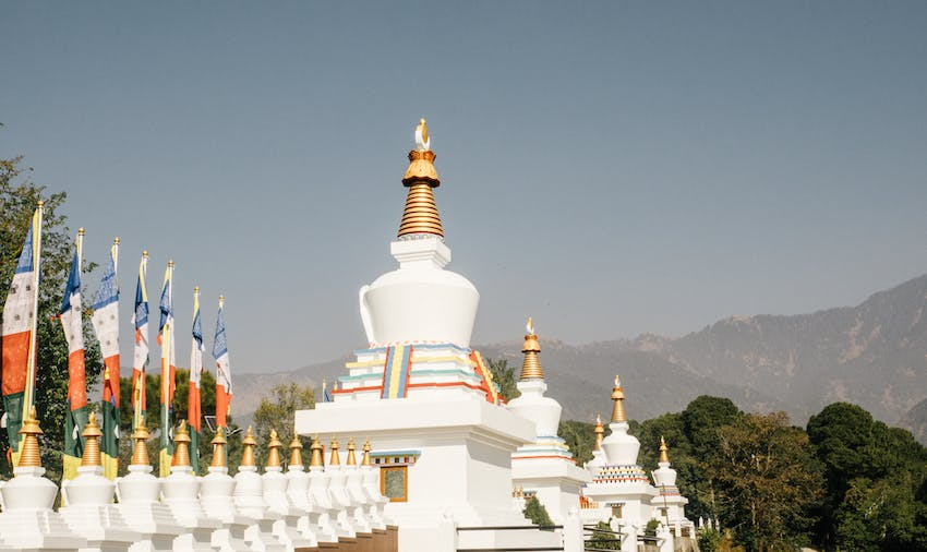 Volunteer in India - Dharamsala with IVHQ