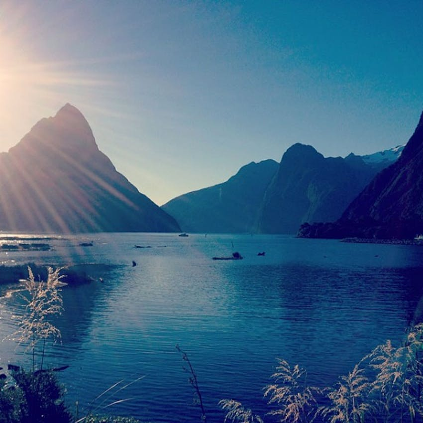 Visit the Milford Sound as an IVHQ volunteer in New Zealand
