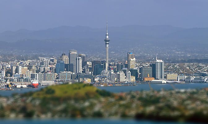 Volunteer in New Zealand - Auckland City