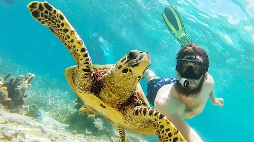 Volunteer Abroad Programs 2015 Marine Conservation in Madagascar