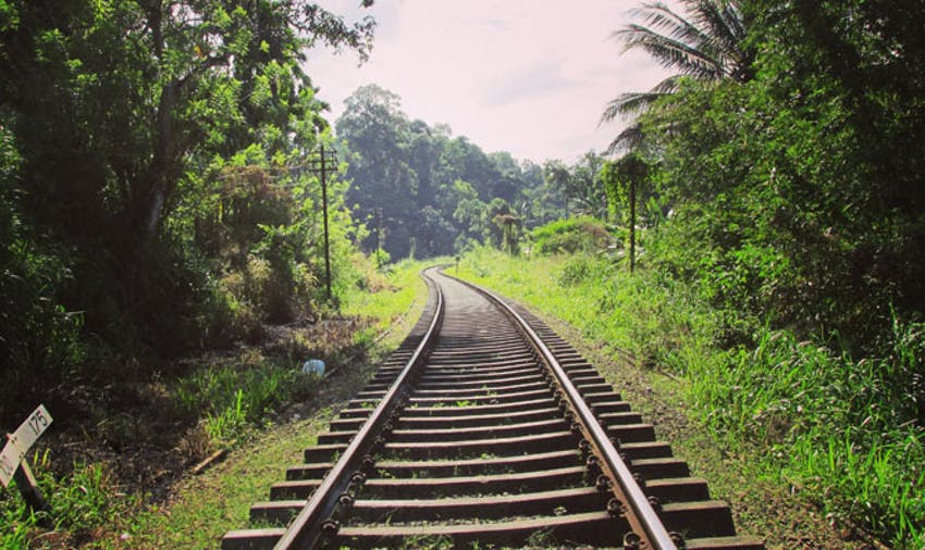 Traveling and volunteering in Sri Lanka with IVHQ