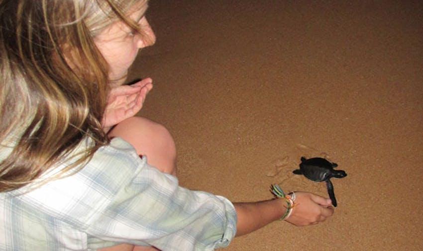 Releasing turtles as a volunteer in Sri Lanka with IVHQ