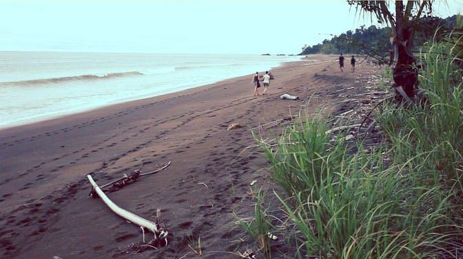 Take a winter break volunteering in Costa Rica with IVHQ