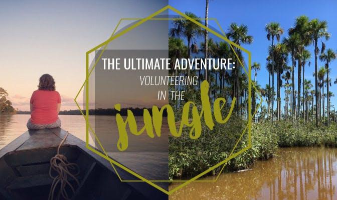 The Ultimate Adventure: Volunteering In The Jungle
