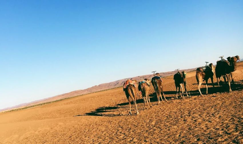 What is there to see when you volunteer in Morocco