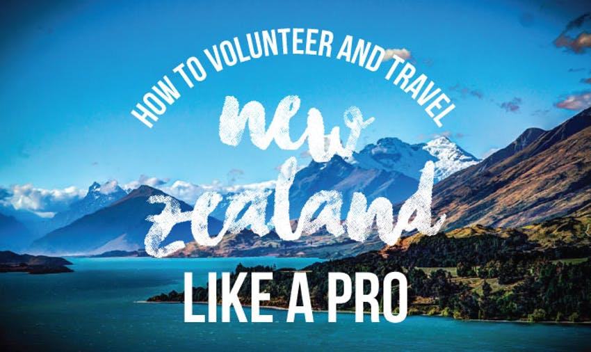 Volunteer and travel in New Zealand with IVHQ
