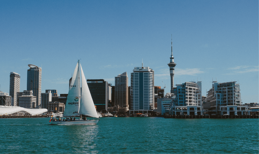 Volunteer in New Zealand with IVHQ