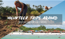 Volunteer Trips Abroad You Can Take For 1 and 2 Weeks