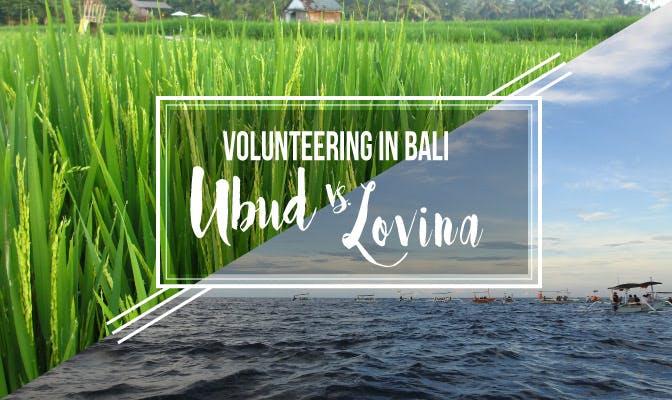 Volunteer in Bali Ubud vs Bali