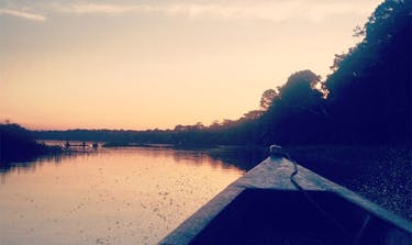 Living in the Peruvian Amazon with IVHQ