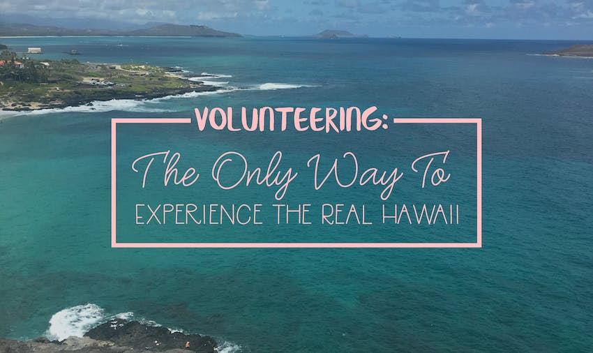 Volunteering: the only way to experience the real Hawaii