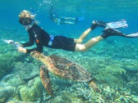 Marine Conservation project volunteer with Turtle - IVHQ Australia