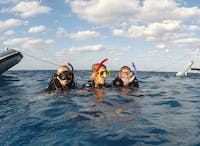 IVHQ volunteers in the water on the Marine Conservation project in Australia