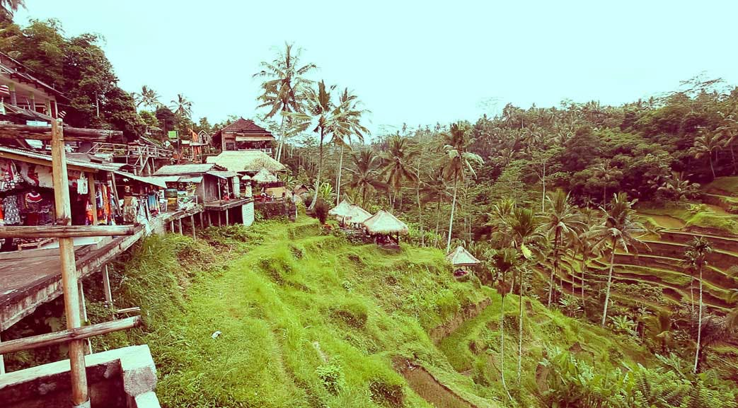 Exploring Bali in the weekends with IVHQ