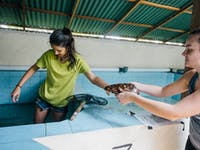Volunteer in Turtle Conservation in Bali with IVHQ