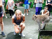Volunteers visit Monkey Forest in Ubud, Bali with IVHQ