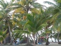 IVHQ Marine Conservation island location