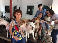 Animal Care volunteers with IVHQ in Cambodia