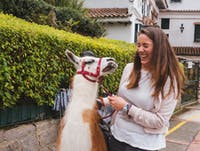 IVHQ volunteer with a Llama in Bogota, Colombia